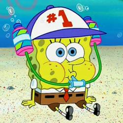 spongedude's Photo