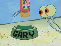 SpongeBuddy Mania SpongeBob Transcripts A Pal for Gary