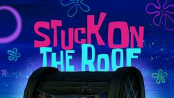 Stuck on the Roof