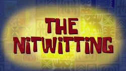 The Nitwitting